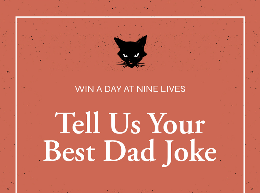 Win with Nine Lives